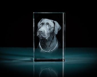 3D Pet Portrait Memorial Crystal