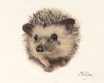 Henry the Hedgehog -  Greeting card from my painting   ( wildlife, bird, animal, dog, butterfly, wildlife art, hedgehog )
