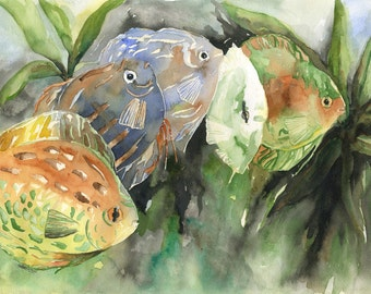 Watercolor and Ink Discus Fish Original Painting, Discus Art, Fish Decor
