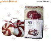 Christmas in July SALE Needle Felting Kit, DIY Craft Kit, Peppermint candy, wool Christmas ornament plushie White red green holiday decor tr