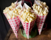 24 red & white gingham paper cones