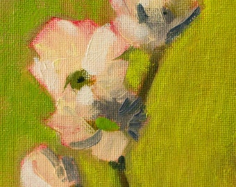Floral Still Life Painting, Original Dogwood Flower, Small 4x5 Canvas, Pink White Blooms, Botanical Wall Home Decor, Little Bloom, Spring