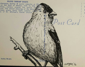 Gold Finch - Original drawing on vintage post card by Mr Hooper of Nashville Tennessee