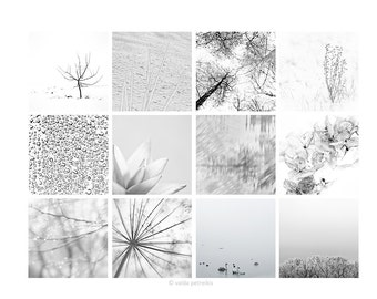 Desk calendar 2018 Abstract nature calendar 5x7 photo Mini wall calendar Fine art black and white Neutral home decor Loose pages