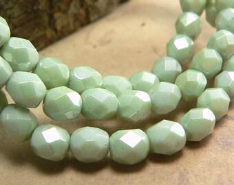 Stone Green Czech Glass Beads Round Celadon Opaque Fire Polished 6mm (25)