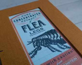 Flea Legs (a handmade notebook)