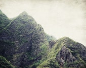 Green mountain photography, Maui Hawaii landscape, forest green, rustic modern print, misty mountian print 'Maui Mountain'