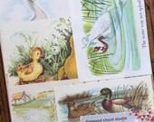 Ducks on the Pond Vintage Bird Collage, Scrapbook and Planner Kit Number 2094