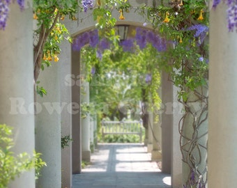 Flower Arch Walkway for your digital photo projects