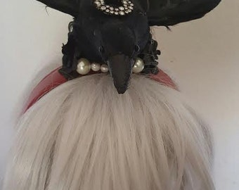 Bird, Bird hat, Bird fascinator, Halloween, Raven, Raven hat, Birds, MsFormaldehyde