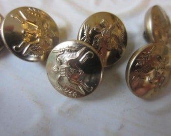 Vintage  Buttons matching antique gold metal eagle military motif lot of 6 (lot oct 52b)