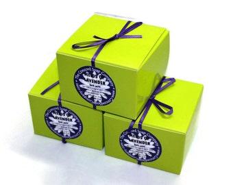 Fields of Lavender Handmade Bath Salts 5oz - floral,feminine,lime green box,purple ribbon,vegan,natural,moisturizing,essential oil,fragrance
