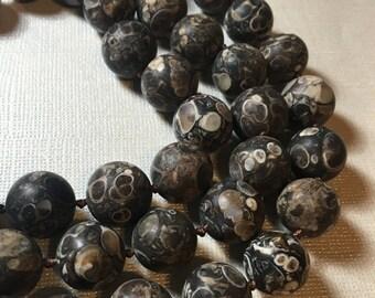 25% Off SALE Rare Matte Turritella Fossil Shell Round Beads 14mm, 17 Inches , Satin Finish Designer Beads