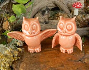 Owl Wedding Cake toppers  Owl Bride and Groom  Ceramic Glazed Owls Handmade...  Ready to ship  Soft orange blush oa