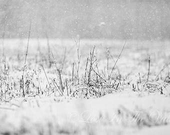 Farm Field Photograph / Winter Photo / Rustic Decor / Rural Landscape / Fine Art Photography / Adirondack Photo / Black / White / Grey