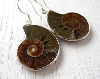 SALE - Little Sand Color Ammonite Fossil Earrings