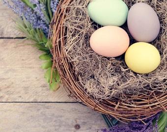 Easter print, home decor, easter eggs photo, nursery decor, shabby chic, child's room photography, nursery wall art, rustic pastel nest egg