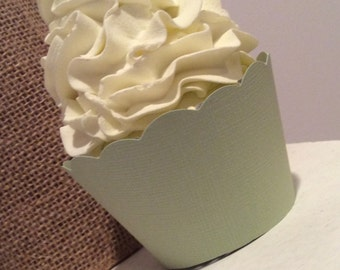 Sage Green Cupcake Wrappers