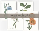 Make Your Own Set of Four A2 French Flower Greeting Cards
