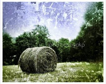 8 x 10 Kentucky Hay roll photo print