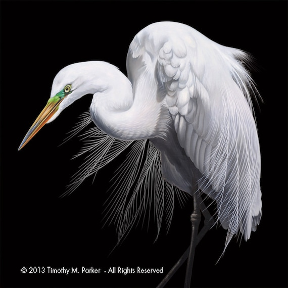 Contemporary egret painting reproduction focal point for White heron paint