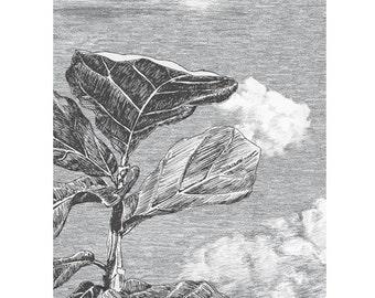 Seasons Autumn Cloud Forrest Wallpaper Sample