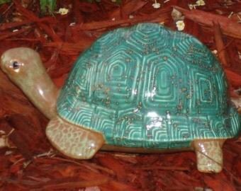 Box Turtle, Mystic Jade