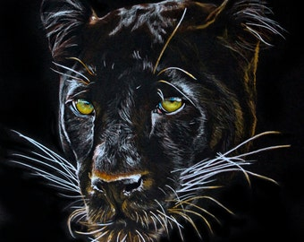 "Panther Drawing 11""x14"" Print"