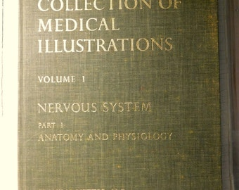 Medical Book 1983 w Full page Full color Medical Illustrations/CIBA Collection of Medical Illustrations Nervous System Anatomy Physiology