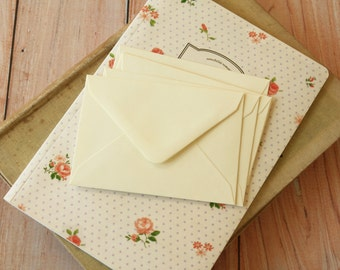 Ivory C7 Envelopes & Notecards Tags 10pc set
