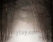 Rustic Decor Nature Photography Brown White Wall Art- Winter Forest Trees Fog- Wall Art - January Hymn