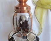 Odd Furry Little Creature Caught Under Glass in Copper Lantern For Your Cabinet of Curiosities