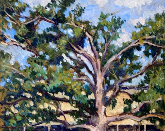 Summer Afternoon at Tanglewood, The Old Tree. Oil on Panel, 9x11 American Impressionist Fine Art, Signed Original Plein Air Landscape in oil