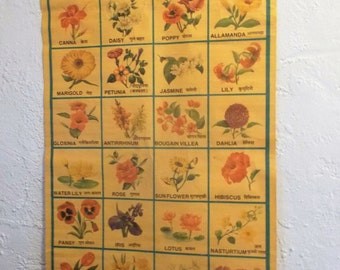 Vintage Pictorial Flowers Chart from India