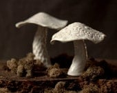 Pair of white ceramic woodland mushrooms.  Home decor, wedding gift for nature lovers.
