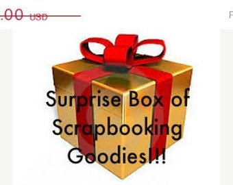 Surprise Pack - Scrapbook Papers and supplies!