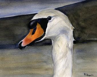 Swan - Original Watercolor Painting - 8 x 11 inches