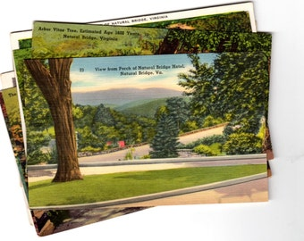 10 Vintage Natural Bridge Virginia Unused Postcards Blank - Travel Themed Wedding Guestbook