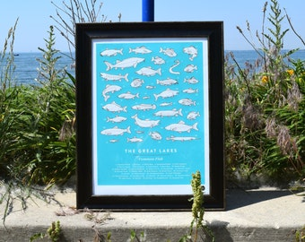 Beautiful made in Michigan - Fish of the Great Lakes poster