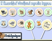 Woodland Cupcake Toppers Woodland Baby boy shower Decorations Custom forest animal favors cupcake picks cake topper cupcake top 12 assembled