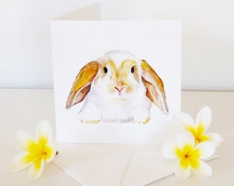 Rabbit cards, Animal note cards, Bunny cards, gift idea
