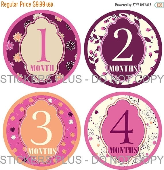 SALE Baby Month Stickers   Girl Monthly Milestone Stickers  Elegant Flowers Plum Pink Peach - Fast Ship - 1-12 M