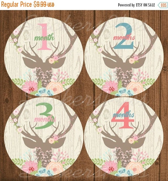 SALE Baby Girl Monthly Stickers Baby Month by StickersPlus on Etsy