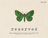 RESERVED for Rich