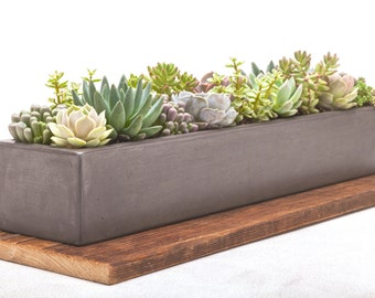 Concrete Planter, Concrete, Planter, Succulent Planter, Outdoor Planter, Indoor Planter, Herb Planter, Cement Planter