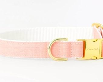 Crew LaLa™ Bridal Peach On White Dog Collar