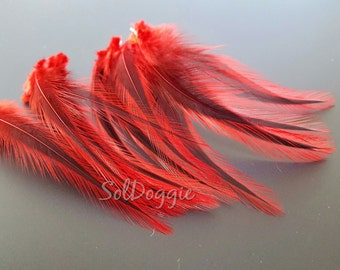 Short Feathers DIY Craft Supplies Red Feathers DIY Jewelry Red Craft Feathers | 12