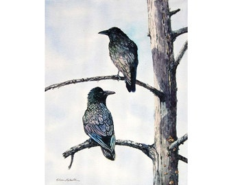 Watercolor ORIGINAL - Twa Corbies - raven, crow, bird, watercolor, watercolour, original