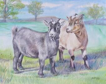 "Custom Animal Portrait Pygmy Goats Watercolor 16"" x 20"""