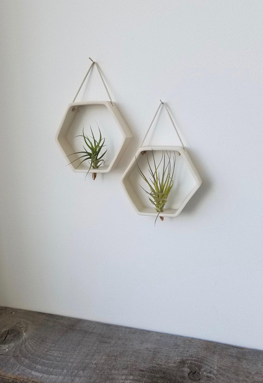 Porcelain Honeycomb Air plant Holder, Geometric Wall Hanging Planter